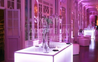 Salon des Miroirs buffets | adopte-un-evenement